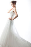 lyxigt bröllop för härlig brudklänning Fotografering för Bildbyråer