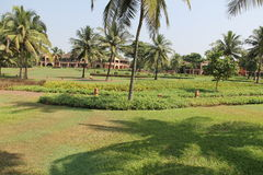 Lyxigt hotell i Goa, Indien Royaltyfria Foton