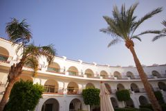 Lyxigt hotell med palmträd royaltyfria foton