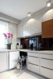 Lyxigt modernt kök Fotografering för Bildbyråer