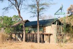 Lyxigt safaritält nära den Ruaha nationalparken, Tanzania Royaltyfri Fotografi