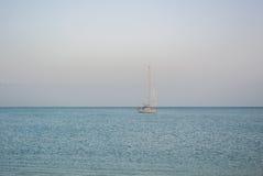 MÀLAGA, SPANIEN - 16. FEBRUAR 2014: Ein einsames Bootsfischen in Meditarrain-Meer mit einem viel von Seemöwen am Hintergrund Lizenzfreie Stockfotos