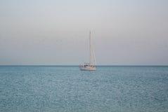 MÀLAGA, SPANIEN - 16. FEBRUAR 2014: Ein einsames Bootsfischen in Meditarrain-Meer mit einem viel von Seemöwen am Hintergrund am V Stockfoto
