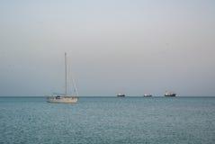 MÀLAGA, SPANIEN - 16. FEBRUAR 2014: Ein einsames Bootsfischen in Meditarrain-Meer mit einem viel von Seemöwen am Hintergrund am V Lizenzfreie Stockbilder