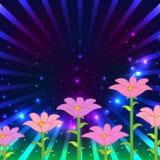 Mágica aberta da flor cor-de-rosa Fotos de Stock
