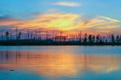 a mágica colore o por do sol na floresta da reflexão do lago Imagens de Stock