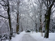Mágica do inverno Fotografia de Stock Royalty Free