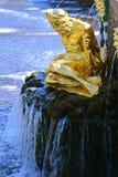 Mágico da escultura em Peterhof, St Petersburg, Rússia Imagens de Stock