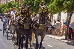 MÁLAGA, ESPAÑA - AGOSTO, 14: Jinetes y carros en la Málaga Imágenes de archivo libres de regalías