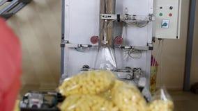 Máquina automática para empaquetar en la fábrica almacen de metraje de vídeo