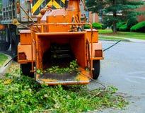 Máquina chipper de madera que lanza el bosque destrozado en un camión Imagen de archivo