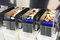 Máquina da transformação de produtos alimentares Fotografia de Stock Royalty Free