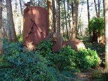 Máquina de hilar del vapor encontrada en bosque Foto de archivo
