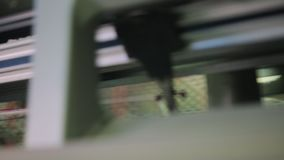 Máquina de la fábrica de los géneros de punto almacen de metraje de vídeo