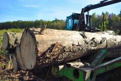 Máquina de la industria de la madera de construcción con la pila de madera Foto de archivo libre de regalías
