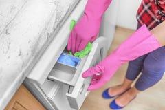 Máquina de lavar fêmea da lavagem da mão Fotos de Stock Royalty Free