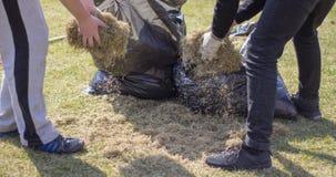 Máquina de Operating Soil Aeration del jardinero en césped de la hierba Fotos de archivo libres de regalías
