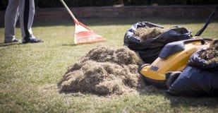 Máquina de Operating Soil Aeration del jardinero en césped de la hierba Fotografía de archivo