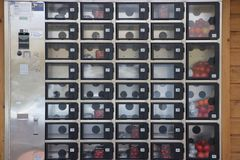 Máquina de venda automática no s-Gravenzande do ` em uma estufa onde o ` pequeno s do tomate possa ser comprado imagem de stock royalty free