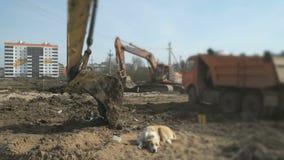 A máquina escavadora transfere arquivos pela rede uma argila em um caminhão usando uma cubeta video estoque