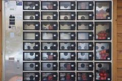Máquina expendedora en s-Gravenzande del ` en un invernadero en donde el pequeño ` s del tomate puede ser comprado imagen de archivo libre de regalías