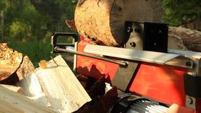 Máquina que taja de madera almacen de video