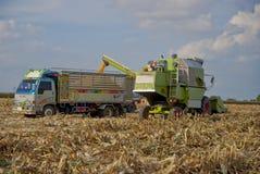 Máquina segador de maíz de Tailandia Fotografía de archivo libre de regalías