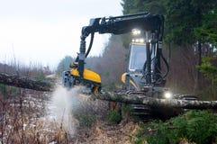 Máquina segador del bosque Imagen de archivo