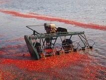 Máquina segador del carrete del agua Fotos de archivo