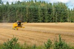 Máquina segadora amarilla en la acción en campo de trigo La cosecha es el proceso de recolectar una cosecha madura de los campos fotografía de archivo