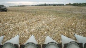 Máquina segadora en el campo de maíz almacen de metraje de vídeo