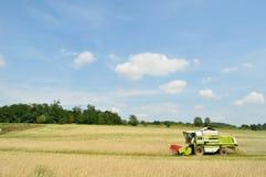 Máquina segadora en el campo de trigo durante la cosecha Foto de archivo