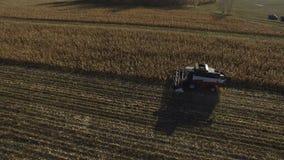 Máquina segadora en la antena de oro del campo de trigo almacen de metraje de vídeo