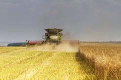 Máquina segadora que cosecha la violación de la semilla oleaginosa Foto de archivo