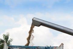 Máquina segadora que cosecha trigo Imagen de archivo libre de regalías