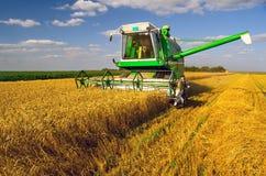 Máquina segadora que cosecha trigo en día de verano soleado imagenes de archivo