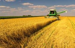 Máquina segadora que trabaja en el campo de trigo Imagen de archivo