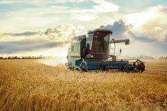 Máquina segadora que trabaja en un campo de trigo En la puesta del sol imagen de archivo libre de regalías