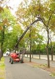 Máquina y hombres que limpian árboles en Viena Imágenes de archivo libres de regalías