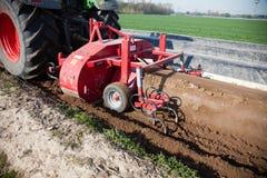 Máquinas de la agricultura en campo del espárrago Imagen de archivo libre de regalías