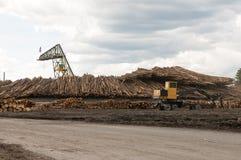 Máquinas moventes do log no moinho da madeira serrada Fotografia de Stock