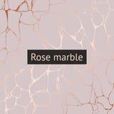 Mármol de Rose Modelo decorativo del vector para el diseño y el dibujo Fotos de archivo