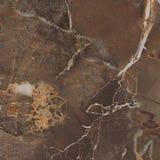 Mármol del marrón oscuro Foto de archivo libre de regalías