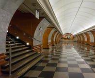 Mármol rojo y gris en la estación de Pobedy del parque Fotos de archivo