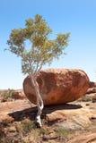 Mármoles gigantes Australia de los diablos de los cantos rodados Fotografía de archivo