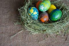 Mármore colorido ovos no ninho Imagens de Stock Royalty Free
