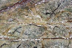 mármore com veias vermelhas Imagem de Stock Royalty Free