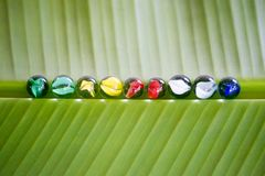 Mármores de vidro coloridos na folha da banana fotografia de stock royalty free
