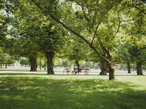 Más viejos pares que se sientan en parque en banco con la ciudad Dinamarca de Copenhague de las bicicletas imagen de archivo