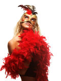 A máscara Fotos de Stock Royalty Free